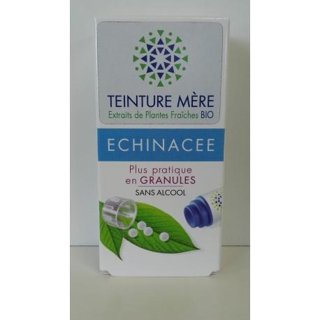 Echinacée extrait de plantes fraîches Bio
